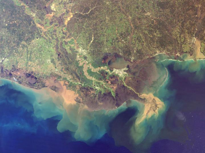 Mississippi River Delta, from U of Michigan